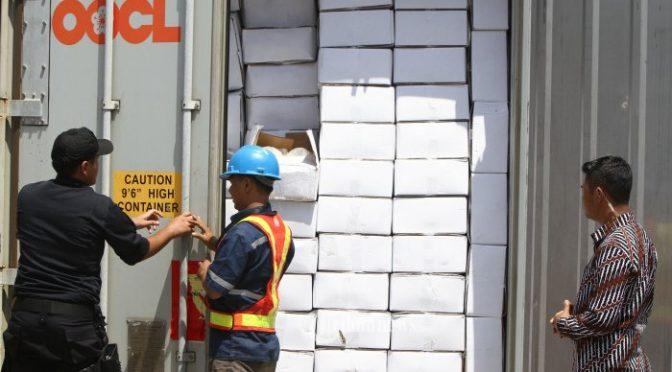 Pemerintah perlu atur komponen tarif kargo LCL