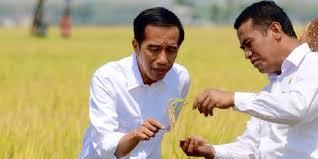 Kementan blacklist 5 importir bawang putih